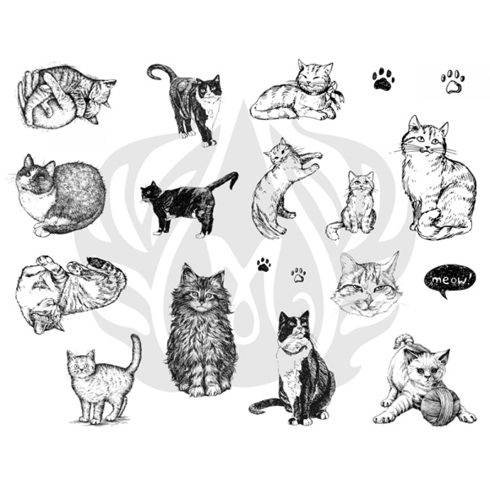 Cats Designer Silk Screen